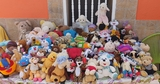 Lote 100 peluches - foto