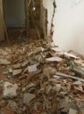 demolicion de interiores - foto