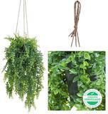Plantas colgantes guirnaldas artificial - foto
