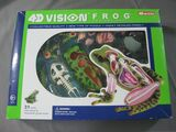 Puzzle 4d vision frog anatomy model - foto