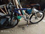 Bicicleta - foto
