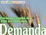 BUSCAMOS FINCAS AGRARIAS - foto
