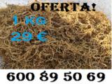 ILRIJ | ENVIO RAPIDO Y SIN COMPETENCIA!! - foto