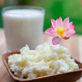 Kefir de leche - foto
