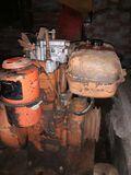 Tractores y Motores lombardini - foto