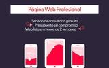 CREO,  REPARO Y OPTIMIZO WEBS - foto