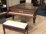 Piano pleyel de concierto 260 cms - foto
