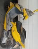 MALAGUTI - 50 F12 - foto