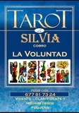 Tarot La Voluntad - foto