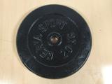 pesas de discos - foto