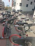 bicicleta lifecicle - foto