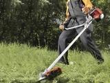 limpieza y jardinería,652501989: - foto