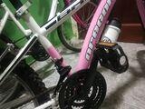 Se vende 2 bicicleta de recreo. - foto