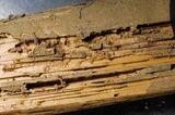 Tratamientos para la madera. - foto