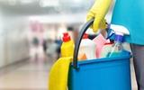 limpieza hogar, oficinas, ... - foto