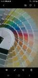 pintamos económico todo 698337856 - foto