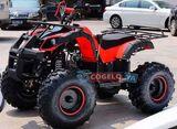 HUMMER PANDA - QUAD 125CC ATV - foto
