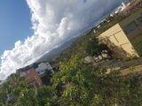 SAN GREGORIO,  BCO.  DE LA ROCHA - foto
