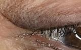 eyeliner permanente - foto