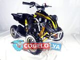 MINI QUAD - 49CC ATV KING KONG - foto