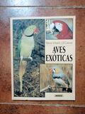 AVES EXÓTICAS - foto