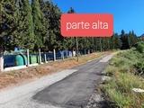 VILLANUEVA / CONCEPCION-ANTEQUERA - foto