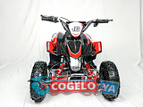 MINI QUAD ATV - 49CC MINIQUAD NIÑO - foto