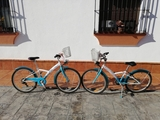 Se venden bicicletas - foto