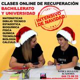 CLASES ONLINE RECUPERACIÓN EXÁMENES - foto