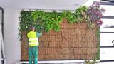 ))))))creacion de jardines verticales - foto