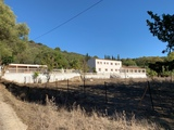 FINCA WITH LARGE HOUSE /EQUESTRIAN FINCA - foto
