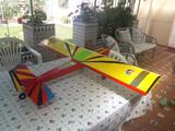 Prima avion artesanal - foto