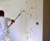 Pintor Profesional económico - foto