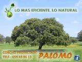 Aislamiento ecolÓgico corcho natural - foto