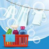 Limpieza del hogar y plancha. - foto
