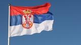 Traducción y clases de Serbio - foto