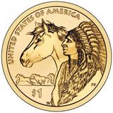 Usa 2012 american native sin circular - foto