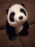 Oso panda - foto