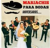 Mariachis para sus fiestas económico - foto