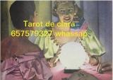 Tarot tarot tarot tarot tarot tarot al - foto