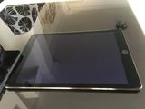 IPAD AIR LCD A1567