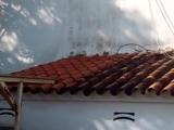 ReparaciÓn y limpieza de tejas - foto