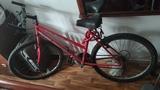 Bicicleta Económica - foto