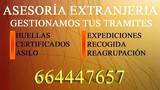 TRAMITES Y GESTIONES <7113> - foto
