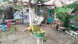 Casa rural con jardín y terrazas - foto