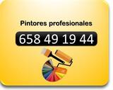 Pintores profesionales toda España - foto