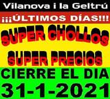 LIQUIDACION X CIERRE SUPER CHOLLOS - foto