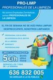 Limpieza :5 euros/h.no limpies tu mujer! - foto