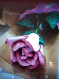 Rosas eternas artesanales - foto
