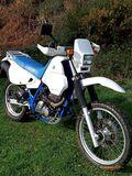 SUZUKI - DR 650 R E - foto